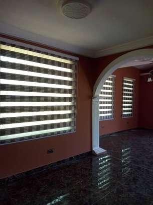 Zebra Roller Blinds image 4