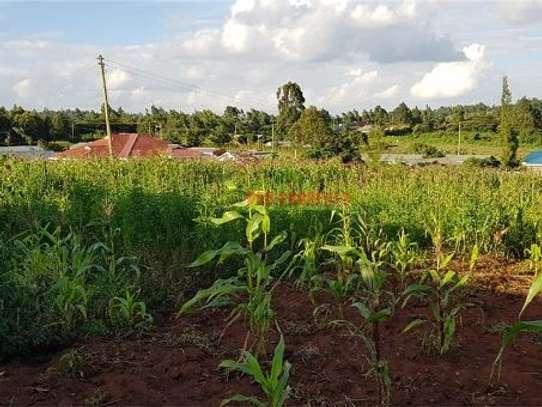Gikambura - Land image 1