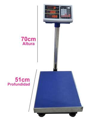 Electronical 300kg Digital Platform Weighing Scales