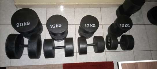 Rubber insulated Gym dumbbells