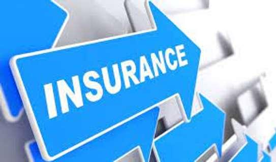 Motor Vehicle insurance image 2