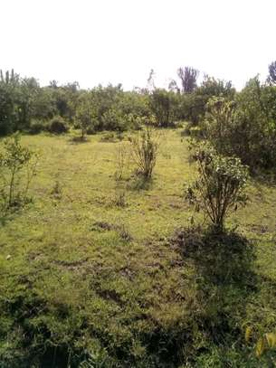 18 Acres Land For Sale at Segera, ADC Mutara Ranch