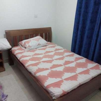 furnished 2 bedroom image 6