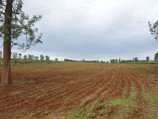 Thika East - Agricultural Land, Land