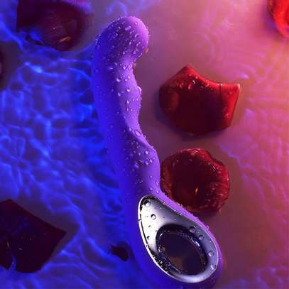 USB Rechargeable Handheld Vibrator Massager 10 Speeds Mode - Pink/ Purple image 4