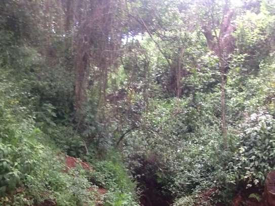 Prime land in North Kinangop. image 3