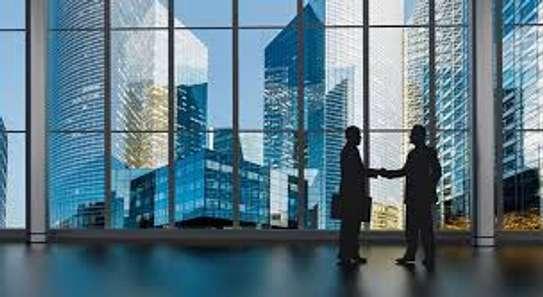 TopStar Real Estate Ltd. image 1