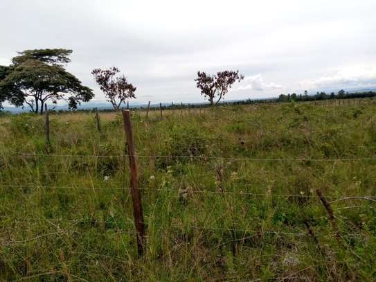 Half an acre at Kabarak