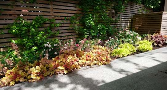 Reliable & Affordable Gardeners |High Quality Gardening & Landscaping.Contact us today image 4