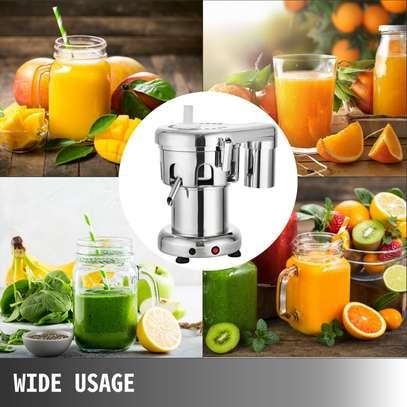 Heavy Duty Commercial Fruit Juicer Fruit Extractor 100KG Per Hour image 3