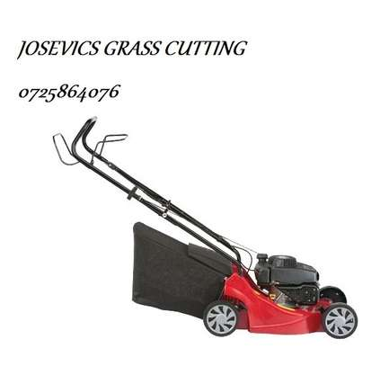 Lawn Mower And Grass Cutting Services image 5