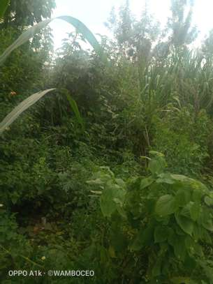 PRIME LAND FOR SALE 10 acres at REDHILL LIMURU way image 2