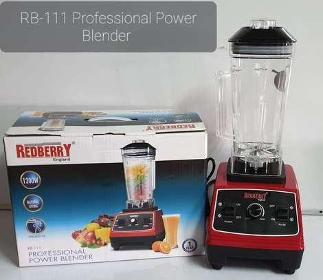 Redberry Professional Blender image 1