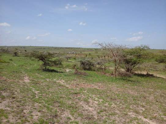 Kaputei Central - Agricultural Land, Commercial Land, Land, Residential Land image 6