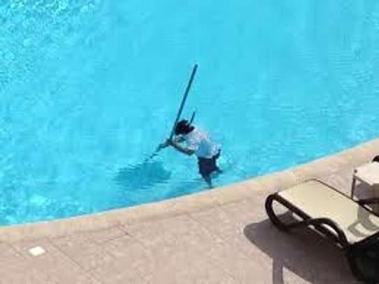 Swimming Pool & Spa Maintenance Services image 2