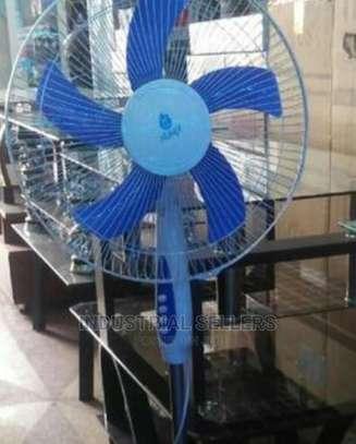 Good Standing Fan image 1