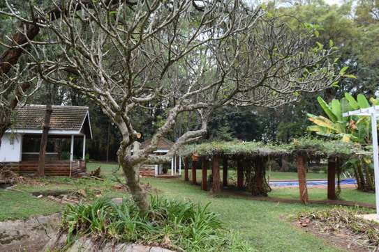 5 bedroom house for rent in Nyari image 13