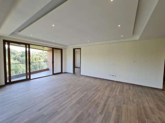 3 bedroom apartment for rent in Spring Valley image 14