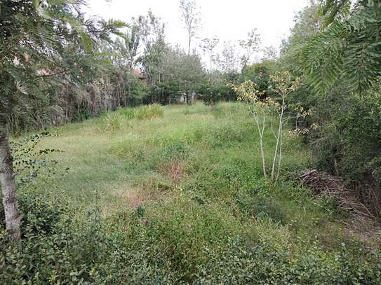 1/4 Acre For Sale