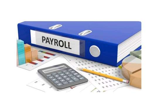 Payroll and Tax Services image 1
