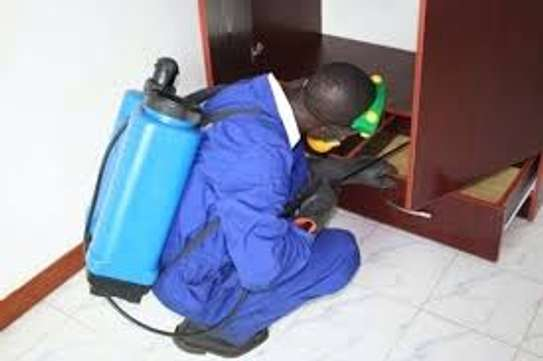 Bestcare Fumigation and Pest control Service image 5