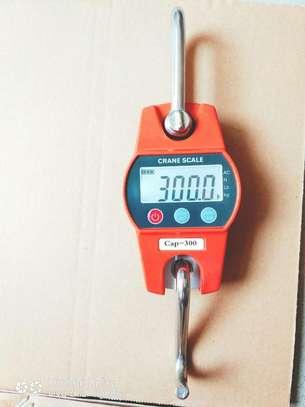 Industrial Crane Weighing 300kg 600lbs Digital Scale image 1