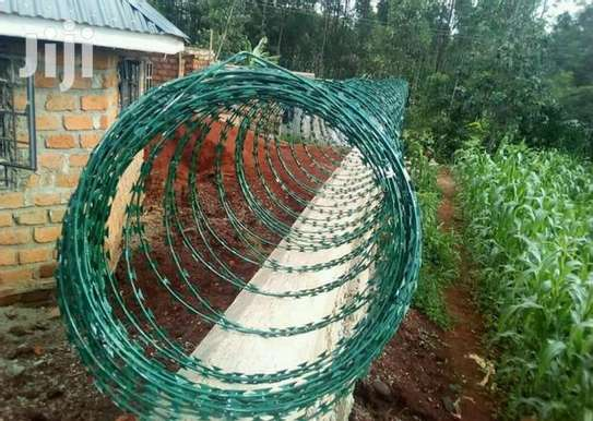Green razor wire supplier and installer in kenya image 2