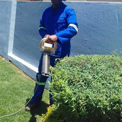 Best Tree Felling, Grass Cutting, Garden Services & rubble removal Grass image 6