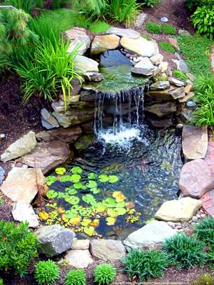 Bestcare Facility Services  /Landscaping & Gardening in Nairobi