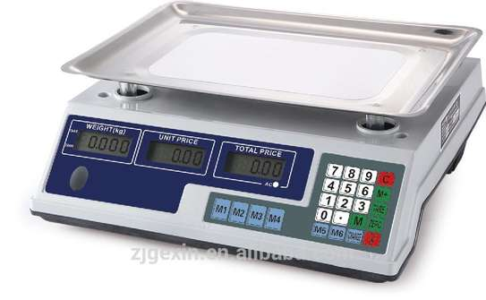 ACS System Electronic Rice Weighing Scale