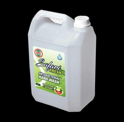 SafariFresh Antibacterial Handwash Green Apple 5l image 1