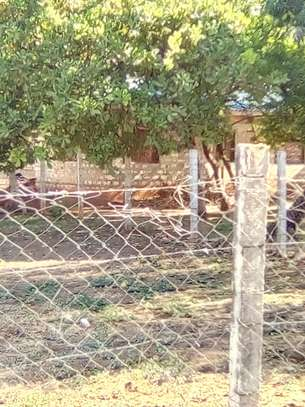 residential land for sale in Mtwapa image 2
