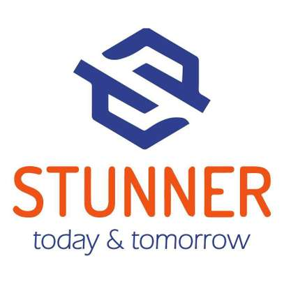 STUNNER GROUP LTD