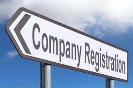 Company/Business Registration Services