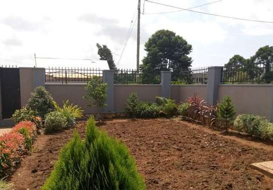 Landscaping, gardening and maintaining. image 4