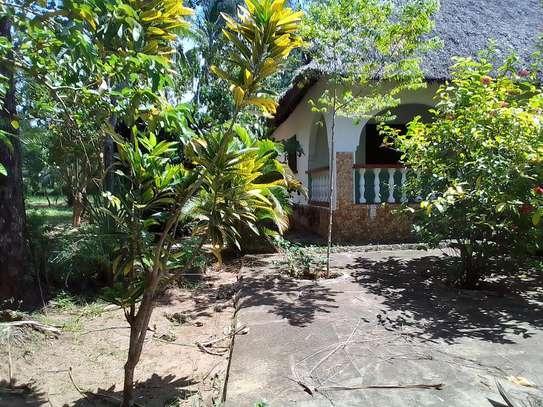House on half an acre plot