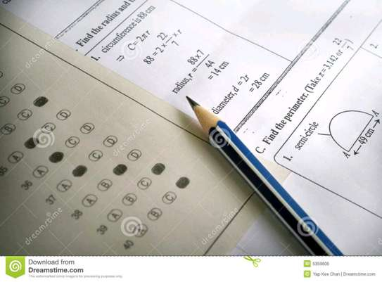 Exam papers for all grades image 1
