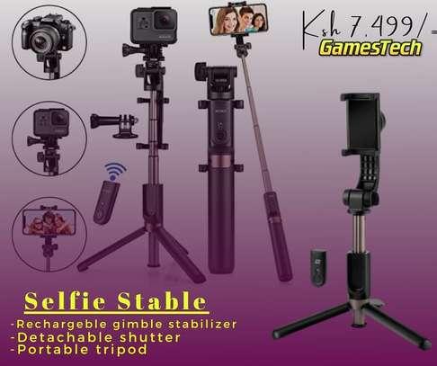 selfie stable image 1