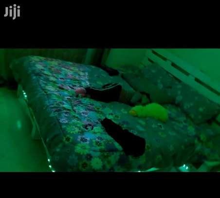 5×6 Pallet Bed image 1