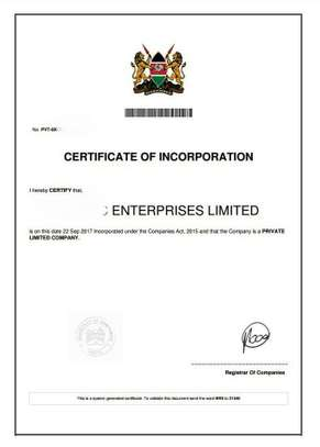 Company registration services image 2