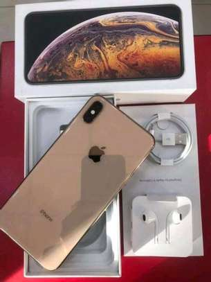 Apple Iphone Xs Max The 512 Gigabytes Gold Colour image 1