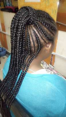 Sexy Tribal  Braids Hairstyle
