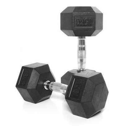 15KG Hex dumbbell pair fitness gym equipment image 1