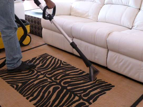 Laundry and Upholstery Cleaning Service.Professional Cleaning service. Satisfaction Guaranteed Call Now image 2