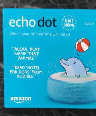Amazon Echo dot kids Edition image 1