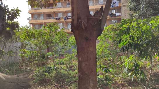 0.25 ac land for sale in Kawangware image 10
