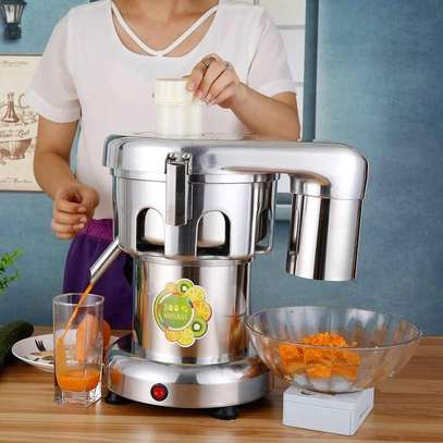 Commercial Juice Extractor Stainless Steel Juicer image 3