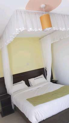 Ceiling mounted mosquito nets opens like curtains image 2