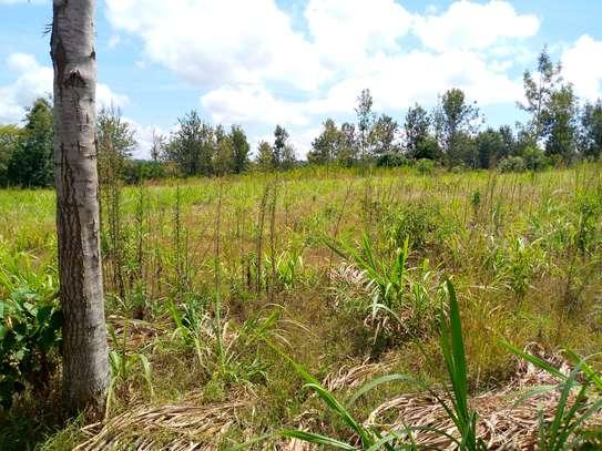 Land survey, estate agency, title deed processing, mutation survey image 4
