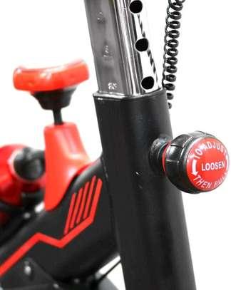 Spinning Bike S100 image 5
